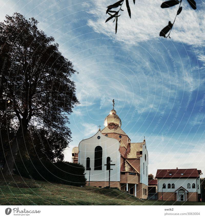 Koszalin Himmel Wolken Baum Gras Blatt Zweig Polen Osteuropa Kleinstadt Haus Kirche Bauwerk Gebäude Fenster Tür Sehenswürdigkeit Stein Beton Metall leuchten