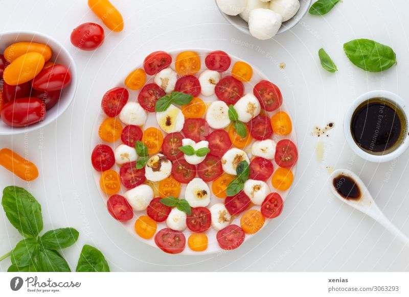 Tomate mit Mozzarella, Basilikum und Dressing mit Balsamicoessig auf weißem runden Teller mit Zutaten Salat Salatbeilage Kräuter & Gewürze Käse Öl Essig