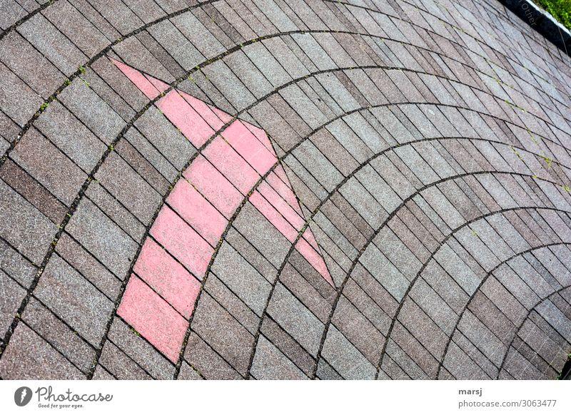 Ich bringe euch elegant um die Ecke Verkehrswege Straße Wege & Pfade Beton Bogen Pfeil rot Richtung richtungweisend bogenförmig sanft Fußweg pflastern