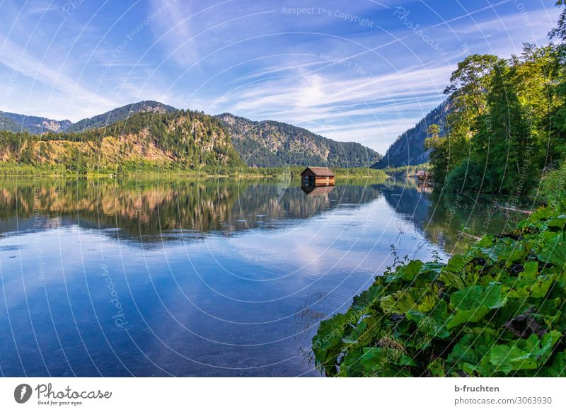 Hütte im See Tourismus Ausflug Sommer Sommerurlaub wandern Natur Landschaft Himmel Schönes Wetter Pflanze Wald Alpen Berge u. Gebirge frei schön Hoffnung Idylle