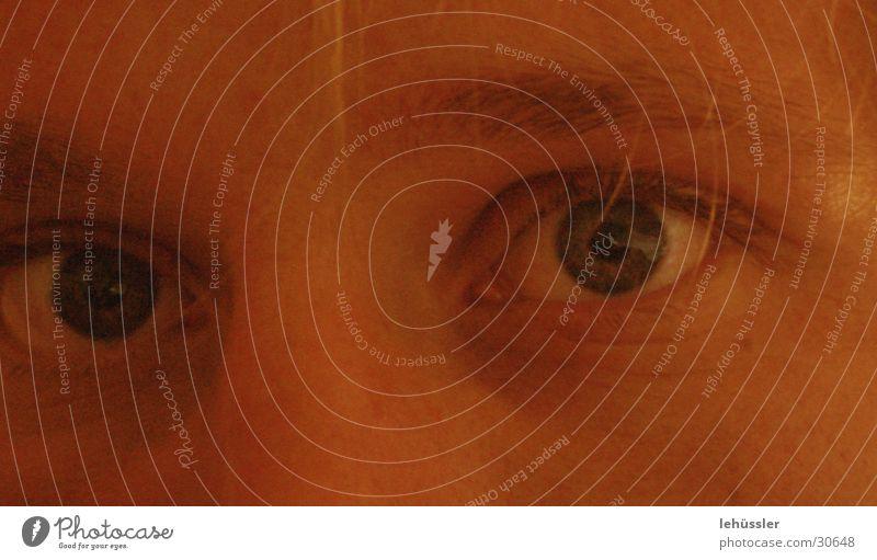 siehst du was ich meine? Mann Gesicht Auge Nase Gesichtsausdruck Gedanke Wimpern Augenbraue