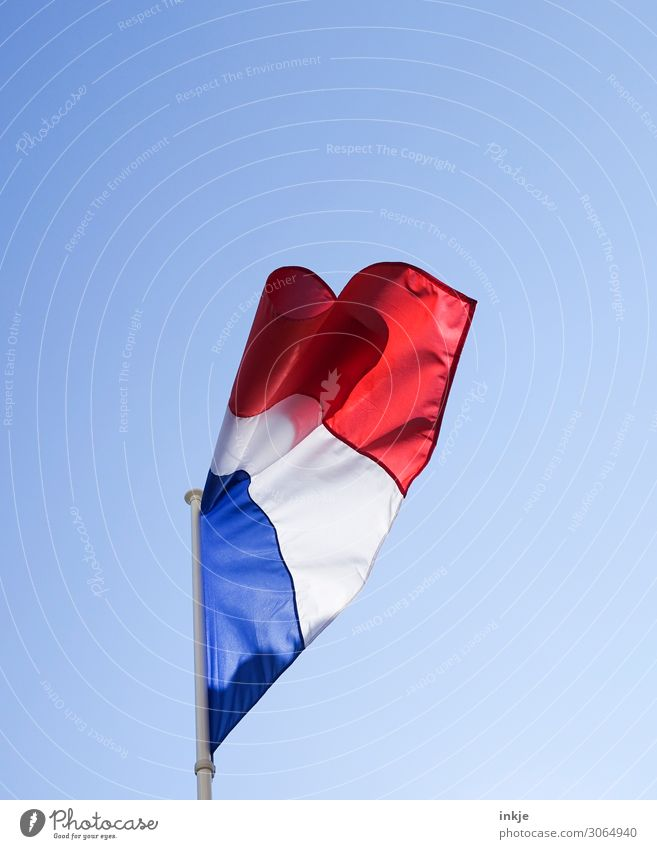 Frankreich Himmel Wolkenloser Himmel Frühling Sommer Schönes Wetter Menschenleer Fahne Nationalflagge hell blau rot weiß Ehre Patriotismus Politik & Staat
