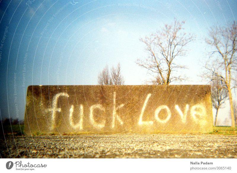 Luck Fove Deutschland Stadt Menschenleer Beton Graffiti Kommunizieren blau braun weiß Ärger gereizt Verbitterung Text fuck Liebe Betonklotz Schriftzeichen