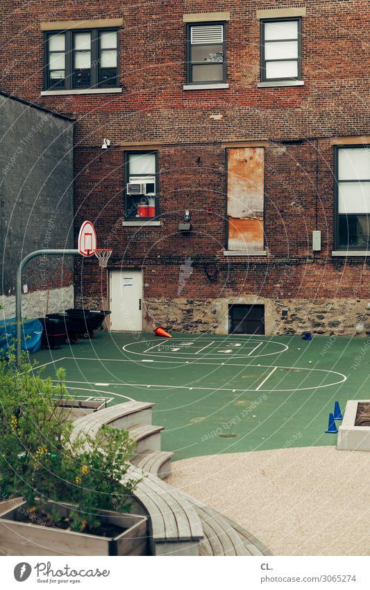 hinterhof in harlem alt Pflanze Stadt Haus Fenster Architektur Wand Sport Spielen Mauer Freizeit & Hobby Linie authentisch USA Platz Bank