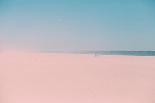 sand Ferien & Urlaub & Reisen Tourismus Ausflug Ferne Freiheit Sommerurlaub Strand Mensch Umwelt Natur Landschaft Sand Wasser Himmel Wolkenloser Himmel