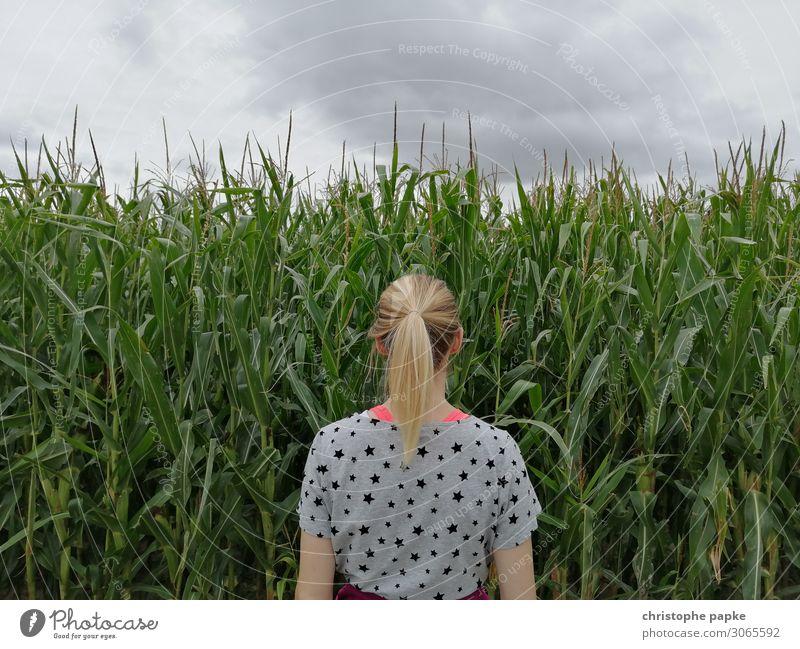 Blonde Frau steht vor Maisfeld feminin stehen blond Zopf Natur natürlich Feld Landwirtschaft Biologische Landwirtschaft Wachstum Farbfoto Außenaufnahme