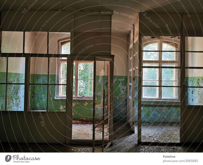 Blick in die Vergangenheit Haus Bauwerk Gebäude Architektur Fenster Tür alt hell lost places Verfall abblättern Unbewohnt Fensterkreuz dreckig Farbfoto