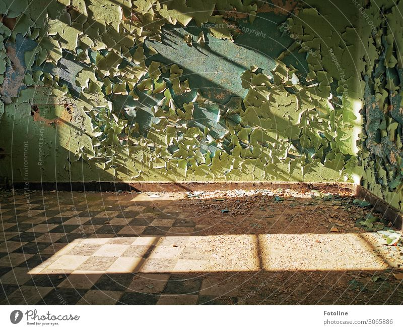 Lost Place Menschenleer Haus Bauwerk Gebäude Architektur Mauer Wand Fenster alt hell lost places Verfall Putzfassade abblättern Heilstätte Farbfoto