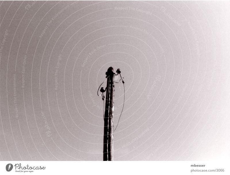 Verwaister Mast Telefonmast Telekommunikation Himmel Schwarzweißfoto kabellos
