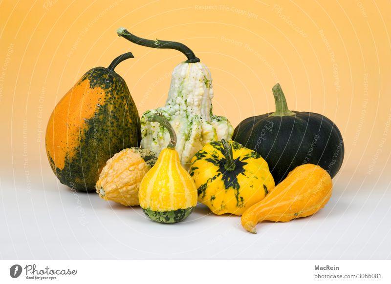 Kürbise Gemüse Ernährung Vegetarische Ernährung gelb Gesundheit Lebensmittel Feldfrüchte Menschenleer Studioaufnahme Farbfoto Innenaufnahme
