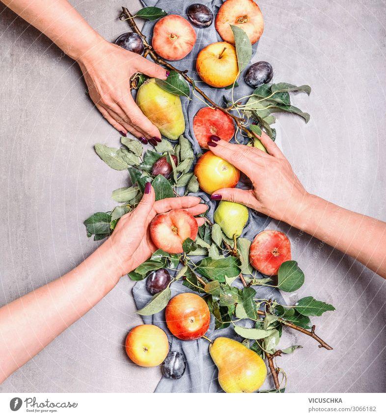 Frauenhände halten saisonales Obst vom Garten Lebensmittel Frucht Apfel Lifestyle kaufen Design Gesunde Ernährung Mensch Erwachsene Hand Bioprodukte Saison