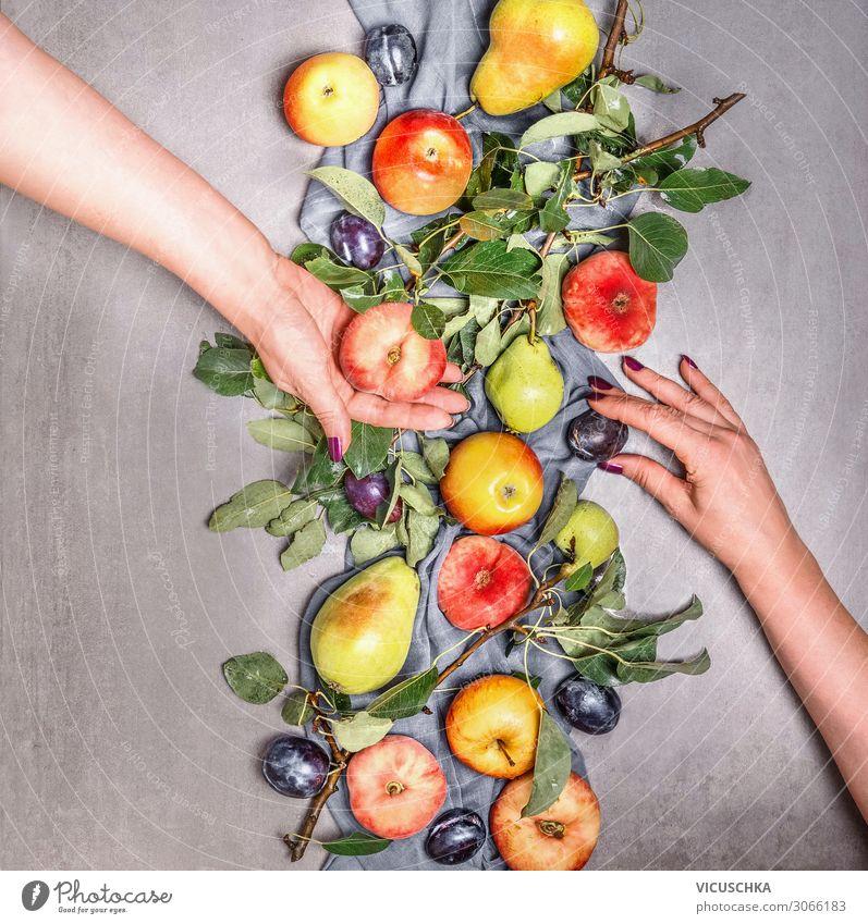 Zwei Frauenhände halten Bio-Obst Mensch Gesunde Ernährung Hand Foodfotografie Lebensmittel Hintergrundbild Erwachsene Garten Frucht Design kaufen Ast
