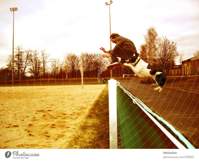 hund_mensch_sprung Hund springen Zaun Sportplatz Mensch Sand
