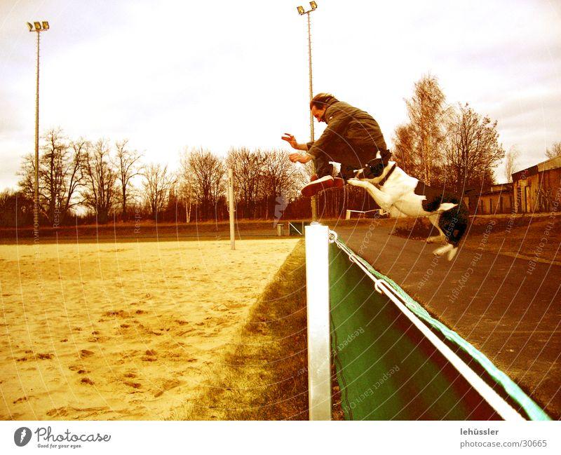 hund_mensch_sprung Mensch springen Hund Sand Zaun Sportplatz
