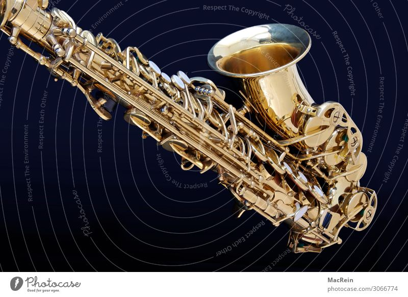 Saxephon Kunst Künstler Show Musik Konzert Orchester Musik hören Saxophon Instrumentalmusik Musikinstrument Blasinstrumente Metall gold Messing Farbfoto