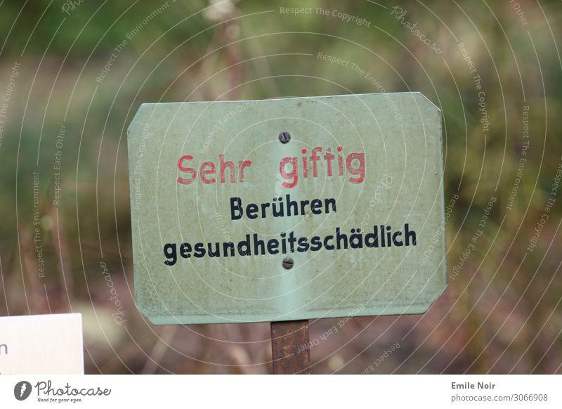 Sehr giftig! Pflanze Umwelt Garten Park Feld Schriftzeichen dreckig Hinweisschild Zeichen Gift Warnschild