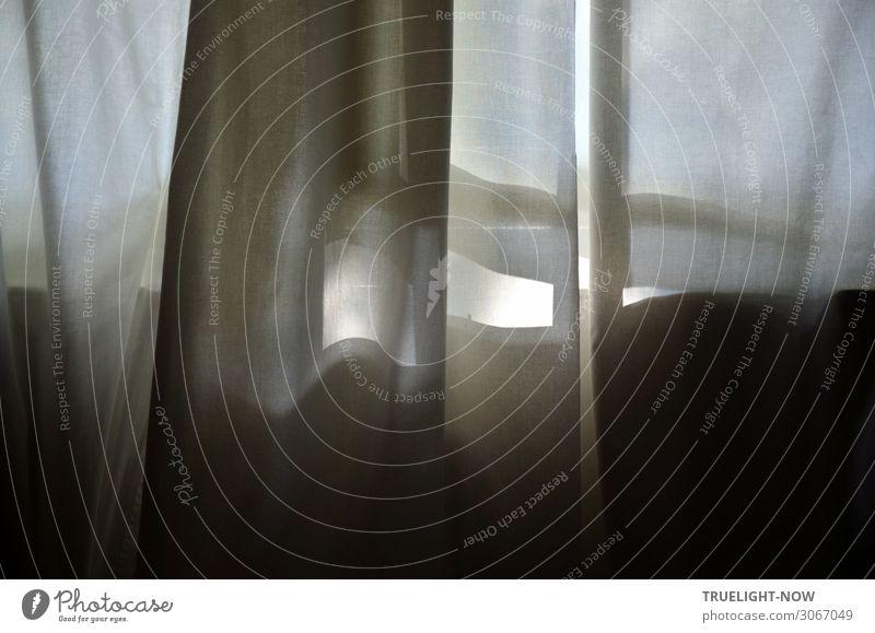 Sonnenlicht hinter weissem Vorhang Stil Wohnung Dekoration & Verzierung Raum Schlafzimmer Fensterscheibe bedrohlich dunkel einfach elegant grau schwarz weiß