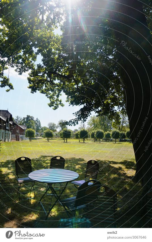 Parkbeleuchtung Umwelt Natur Landschaft Pflanze Luft Wolkenloser Himmel Horizont Sonne Sommer Schönes Wetter Baum Gras Wiese Allee Haus Klappstuhl Klapptisch