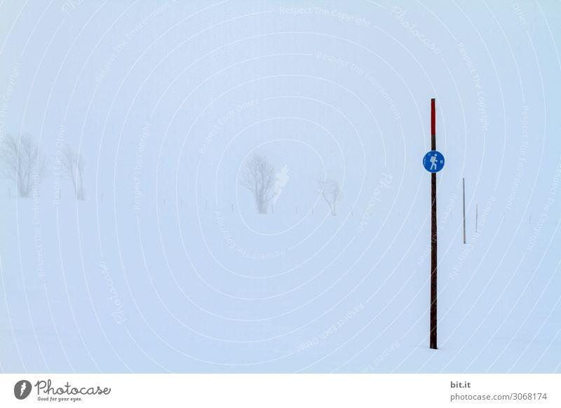 Nebulös l Weg ohne Aussicht. Umwelt Natur Landschaft Winter Nebel Eis Frost Schnee Schneefall Hügel Berge u. Gebirge Zeichen Schriftzeichen