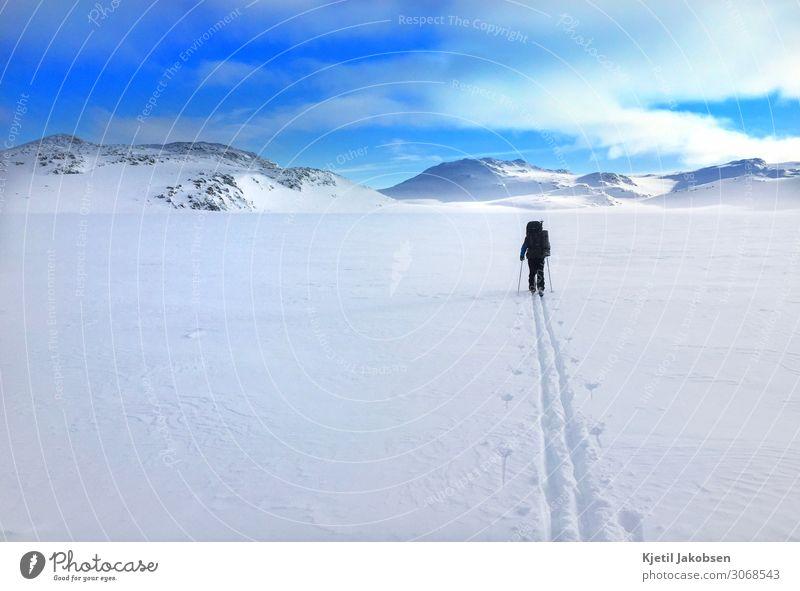 Skifahrer von hinten auf dem Berg Lifestyle Gesundheit harmonisch Abenteuer Expedition Winter Schnee Winterurlaub Berge u. Gebirge wandern Sport Wintersport