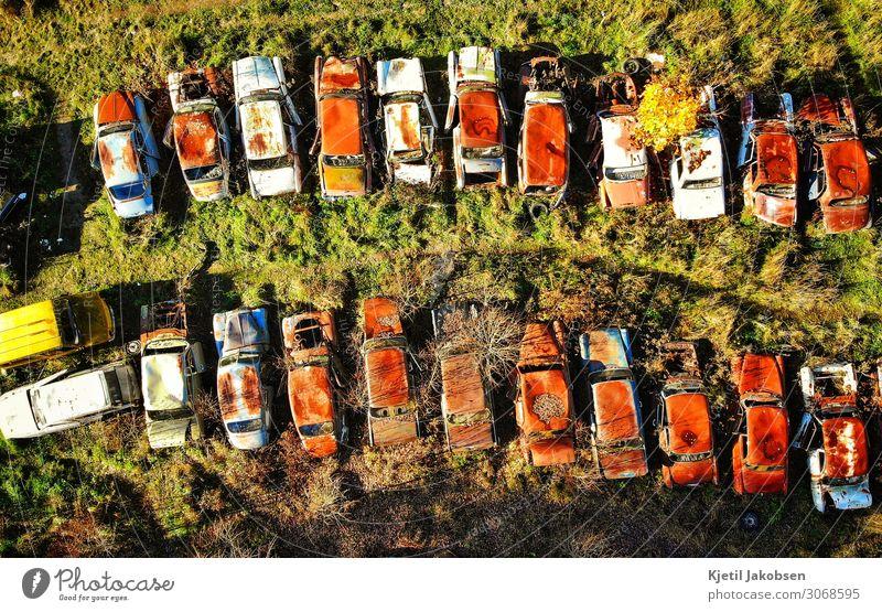 Rostige Autos von oben Sommer Klimawandel Fahrzeug PKW Oldtimer alt retro braun mehrfarbig grün Müdigkeit Freizeit & Hobby Nostalgie stagnierend Symmetrie