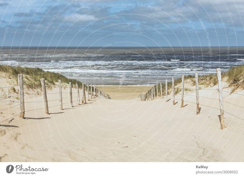 Auf zum Meer! Ferien & Urlaub & Reisen Tourismus Sommer Sommerurlaub Strand Wellen Natur Landschaft Sand Wasser Wolken Frühling Küste Nordsee Zandvoort