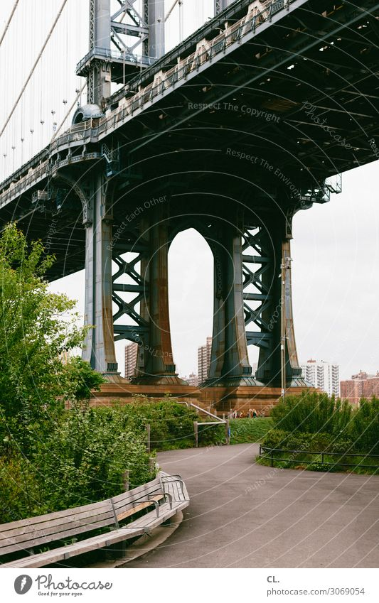 brooklyn Städtereise Sträucher Park New York City Brooklyn Brooklyn Bridge USA Stadt Menschenleer Brücke Bauwerk Architektur Sehenswürdigkeit Wahrzeichen