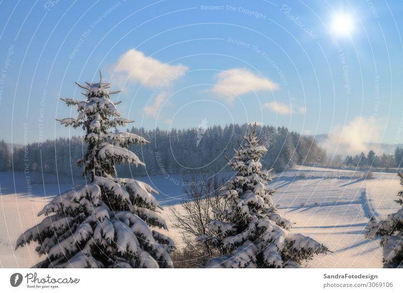 A beautiful winter landscape scene with blue sky Ferien & Urlaub & Reisen Winter Weihnachten & Advent Natur Himmel Schnee Wald Fußspur wandern kalt weiß
