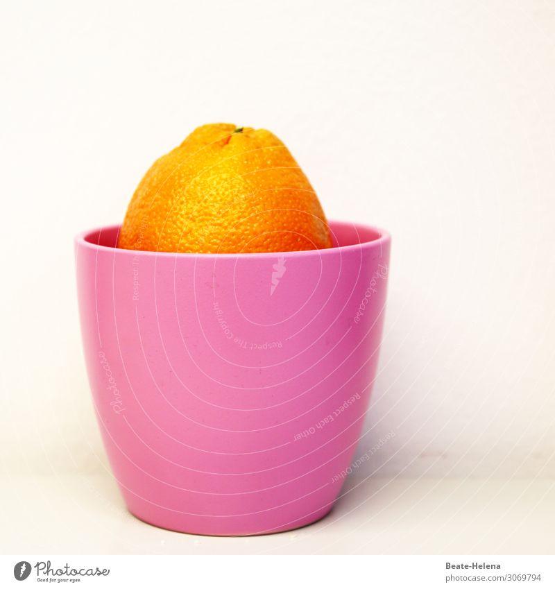 Vitaminbombe Lebensmittel Frucht Orange Ernährung Vegetarische Ernährung Schalen & Schüsseln atmen Duft Erholung Essen glänzend leuchten warten exotisch