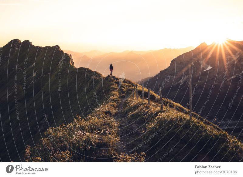 Sonnenuntergang am Zeigersattel Berge u. Gebirge wandern Natur Landschaft Wolkenloser Himmel Sonnenaufgang Sonnenlicht Alpen gigantisch Glück Allgäu