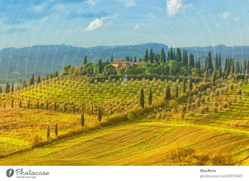 Crete Senesi Haus Landschaft Nebel Hügel Stimmung ruhig Einsamkeit Reisefotografie Toskana Italien Morgendämmerung Farbfoto Außenaufnahme Menschenleer Licht
