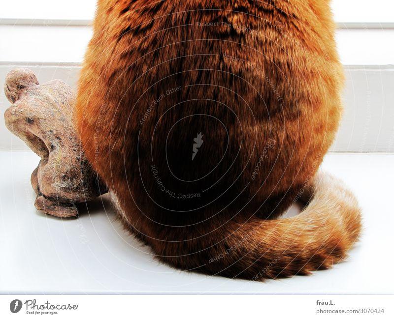 Po an Po Kunst Skulptur Tier Haustier Katze 1 sitzen frech schön einzigartig natürlich Originalität braun rot Geborgenheit Einigkeit Sympathie Tierliebe