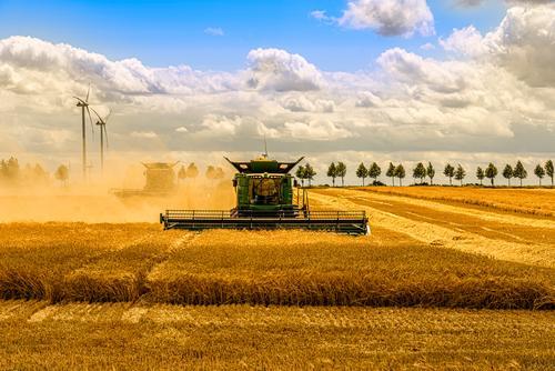 Großer Mähdrescher beim Mähen eines Getreidefeldes Himmel Natur Sommer blau grün Landschaft Sonne Wolken schwarz Herbst gelb Arbeit & Erwerbstätigkeit Feld gold