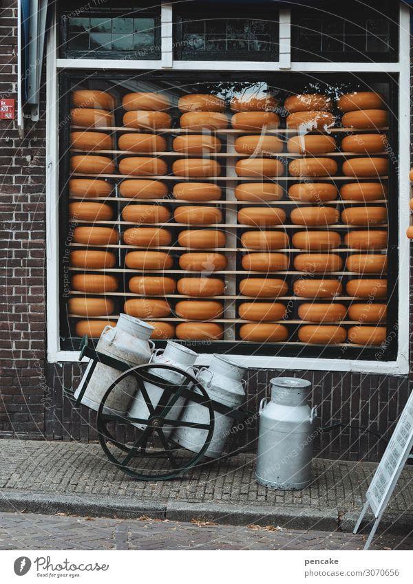 wertvoll   holländisches gold Lebensmittel Käse Milcherzeugnisse Ernährung Kleinstadt Fußgängerzone Mauer Wand Fenster authentisch historisch lecker Gouda