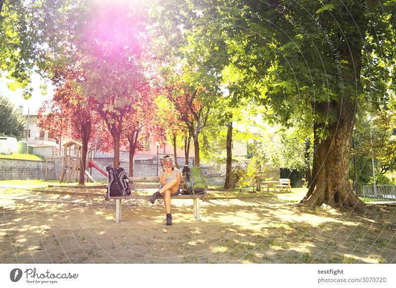 der brenner und der liebe gott lesen feminin Frau Erwachsene 1 Mensch Garten Park sitzen Erholung Zeitvertreib warten Bank Pause Baum Natur Sommer Buch Farbfoto