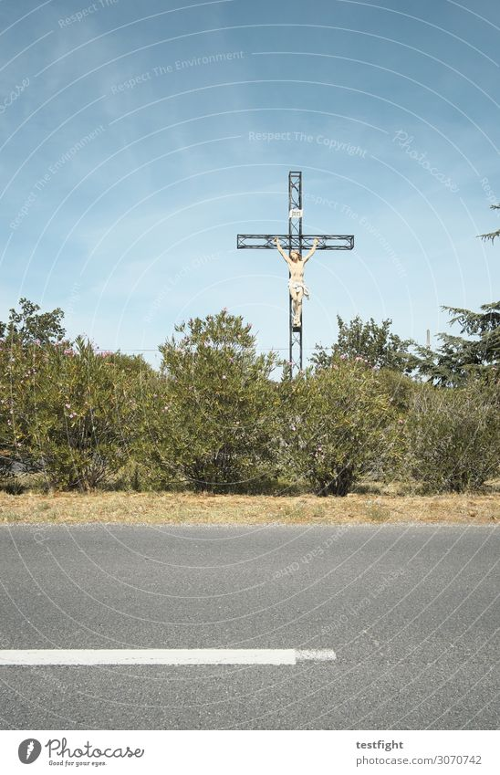 kreuz Umwelt Natur Landschaft Himmel Sommer Baum Grünpflanze Verkehrsmittel Verkehrswege Straße Kreuz Wärme Glaube Religion & Glaube Hoffnung Tradition