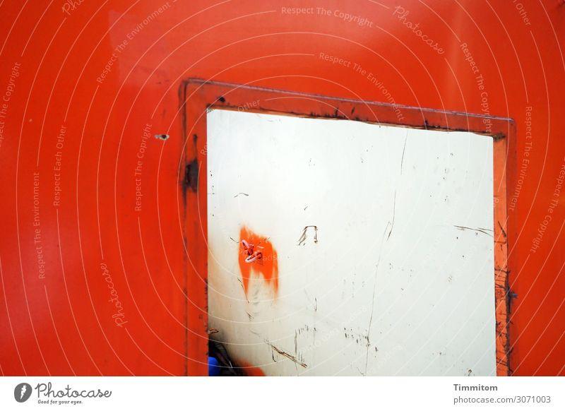 Container mit Einwurföffnung Öffnung Metall warten alt dreckig rot weiß Gefühle erstaunt grell Rost Abnutzung Müll Haken Kratzer Farbfoto Außenaufnahme