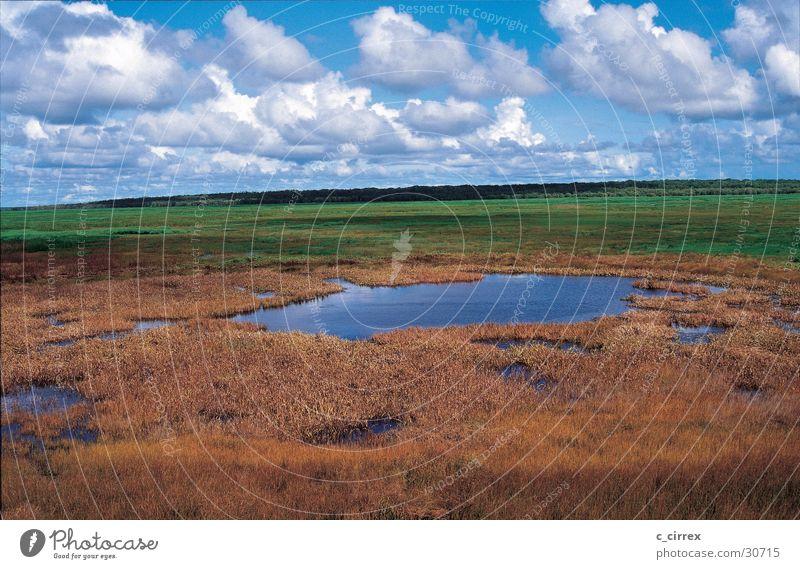 nach dem Regen Himmel Wolken Australien Northern Territory Kakadu National Park