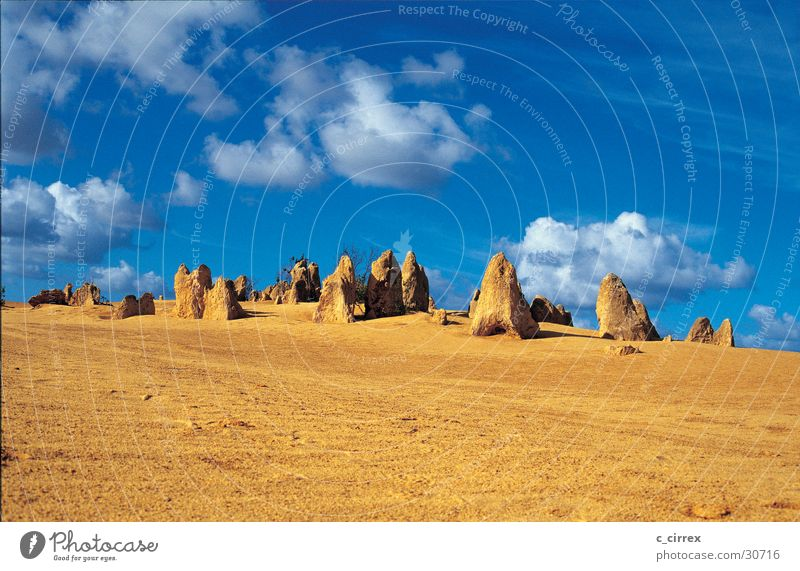 Pinnacles Sand Australien West Australien Nambung National Park