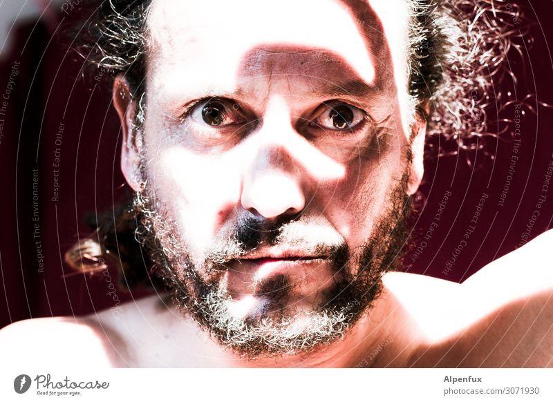 Eingeborener maskulin Mann Erwachsene Kopf Auge Bart Freude Glück Zufriedenheit Lebensfreude selbstbewußt Coolness Optimismus Erfolg Kraft Willensstärke Macht