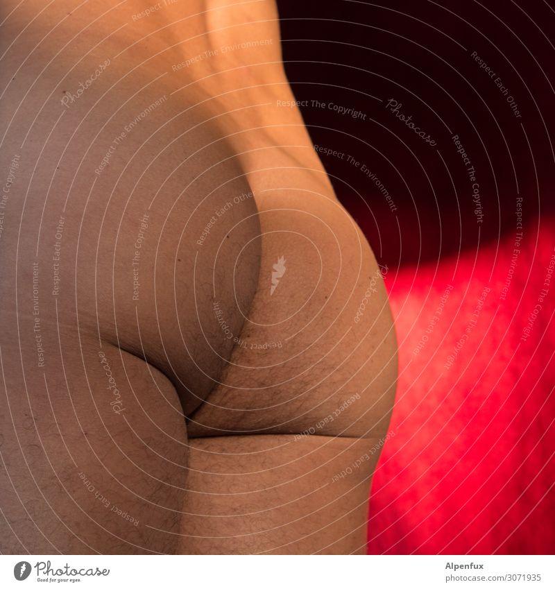 Montag ist ein Arsch ! maskulin Mann Erwachsene Rücken Gesäß 45-60 Jahre nackt Erotik Romantik Begierde Lust Sex Hochmut Wollust Senior Entschlossenheit