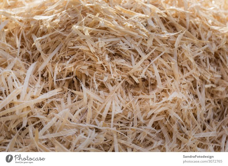 A pile of wood shavings with morning dew Natur gelb Garten Feld Material Recycling achtsam