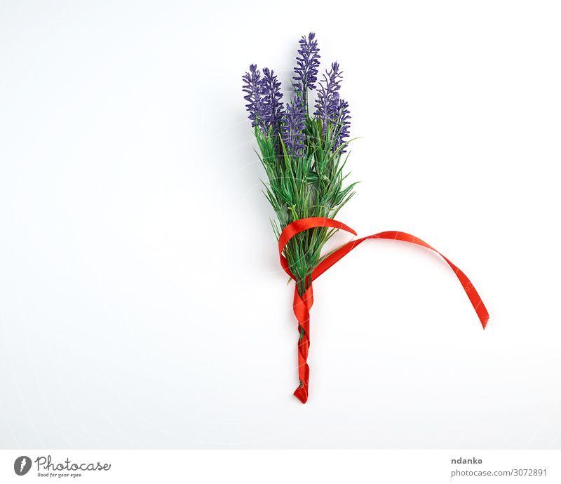 Lavendelbouquet und rote Schleife Feste & Feiern Hochzeit Geburtstag Pflanze Blume Blüte Blumenstrauß Schnur Blühend schreiben oben grün weiß Romantik