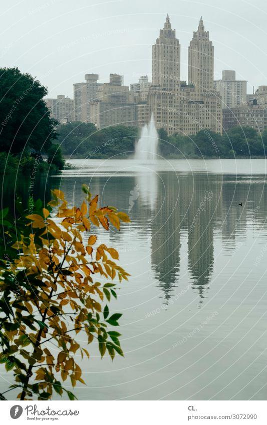 im central park Ferien & Urlaub & Reisen Tourismus Städtereise Umwelt Natur Wasser Himmel Herbst Baum Sträucher Blatt Park See Central Park Manhattan