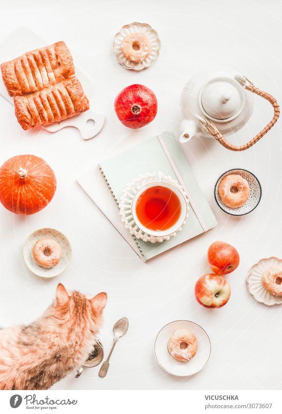 Gemütliches Herbststillleben flach liegend mit Kürbis. Komposition aus weißem Teeservice, Ingwer-Katze, Gebäck, Mini-Donuts, roten Äpfeln und einer Tasse Tee auf leeren Notizbüchern und Alben auf weißem Hintergrund. Ansicht von oben
