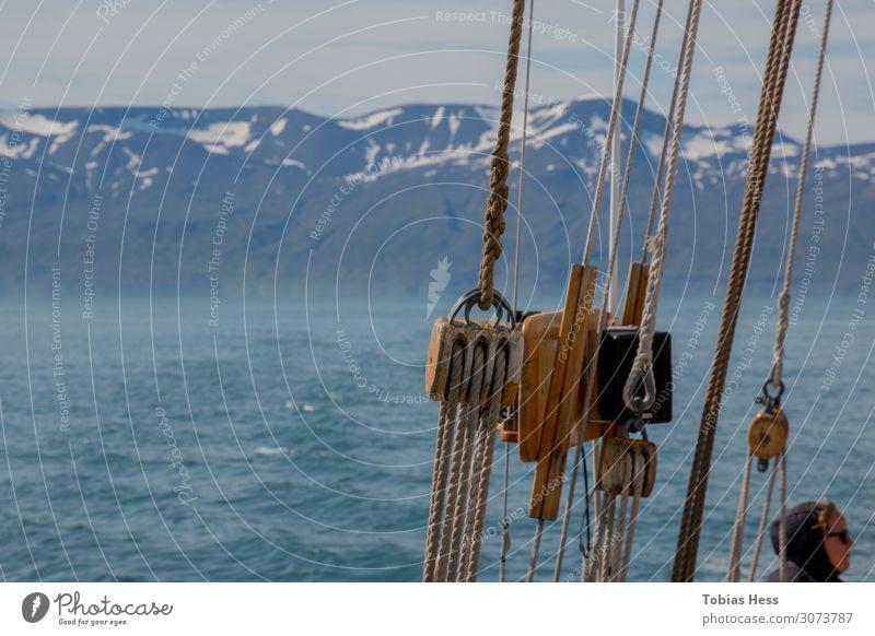 Húsavík Walbeobachtung Umwelt Natur Landschaft Urelemente Horizont Sommer Klimawandel Schnee Berge u. Gebirge Gipfel Schneebedeckte Gipfel Wellen Fjord Meer