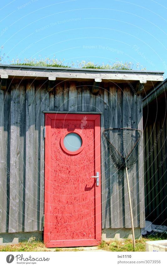 rote Tür Freizeit & Hobby Angeln Sommer Traumhaus Werkzeug Kescher Hütte Fassade Fenster blau grau weiß Lagerschuppen Runde Sache Holztür gestrichen Fischerdorf