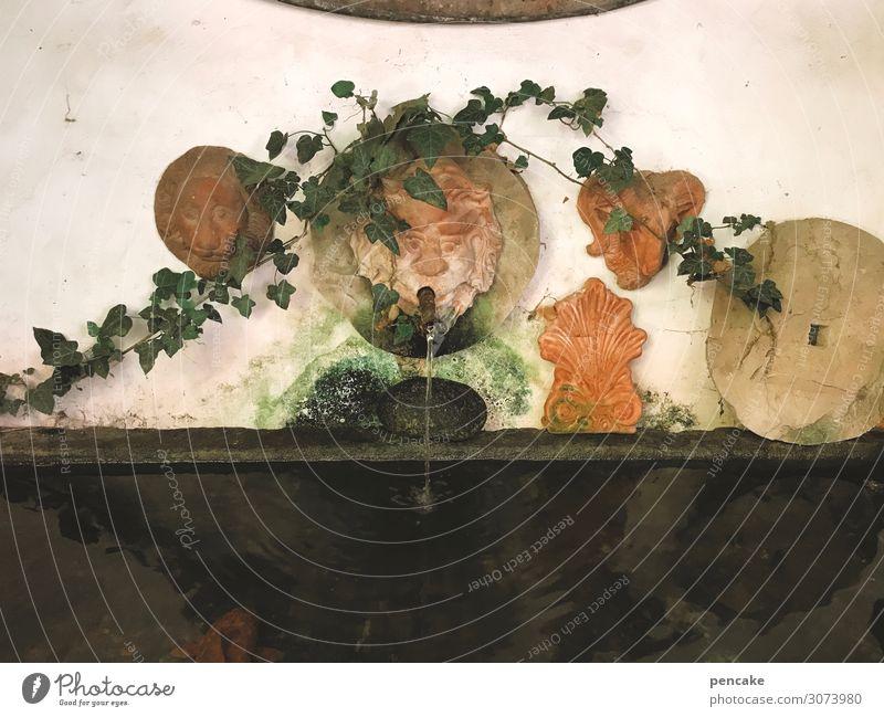 gesundheit | wasser des lebens Brunnen Wasser Gesundheit Natur fließen Gesicht Mühlrad Stein Skulptur Wasserspeier Detailaufnahme nass Farbfoto Wasserspender