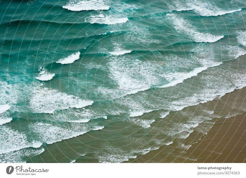 Meer erleben Neuseeland Wellen Ozean Küste Wasser Strand Natur Gischt Brandung Surfen abstrakt Muster Luftaufnahme