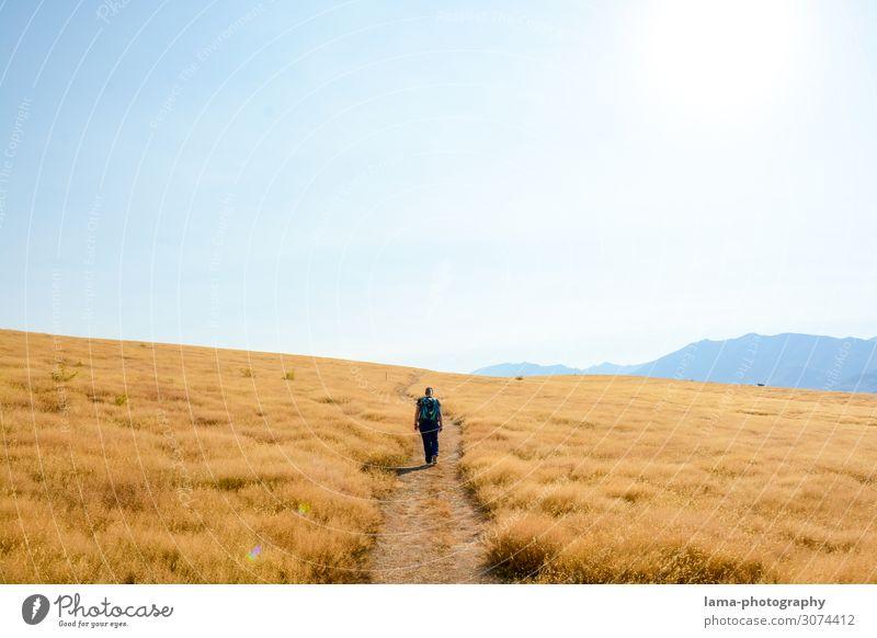 Golden Moment Ferien & Urlaub & Reisen Ausflug Abenteuer Ferne Freiheit Sommer Sommerurlaub wandern 1 Mensch Wolkenloser Himmel Sonnenlicht Schönes Wetter Dürre